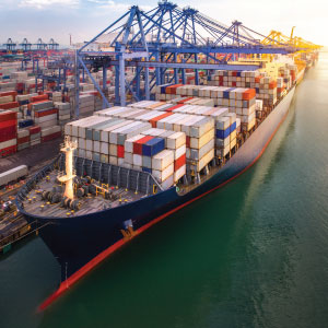 Seaport and Maritime Security consulting